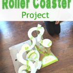 Roller Coaster Paper Plate & Toilet Paper Roll Project
