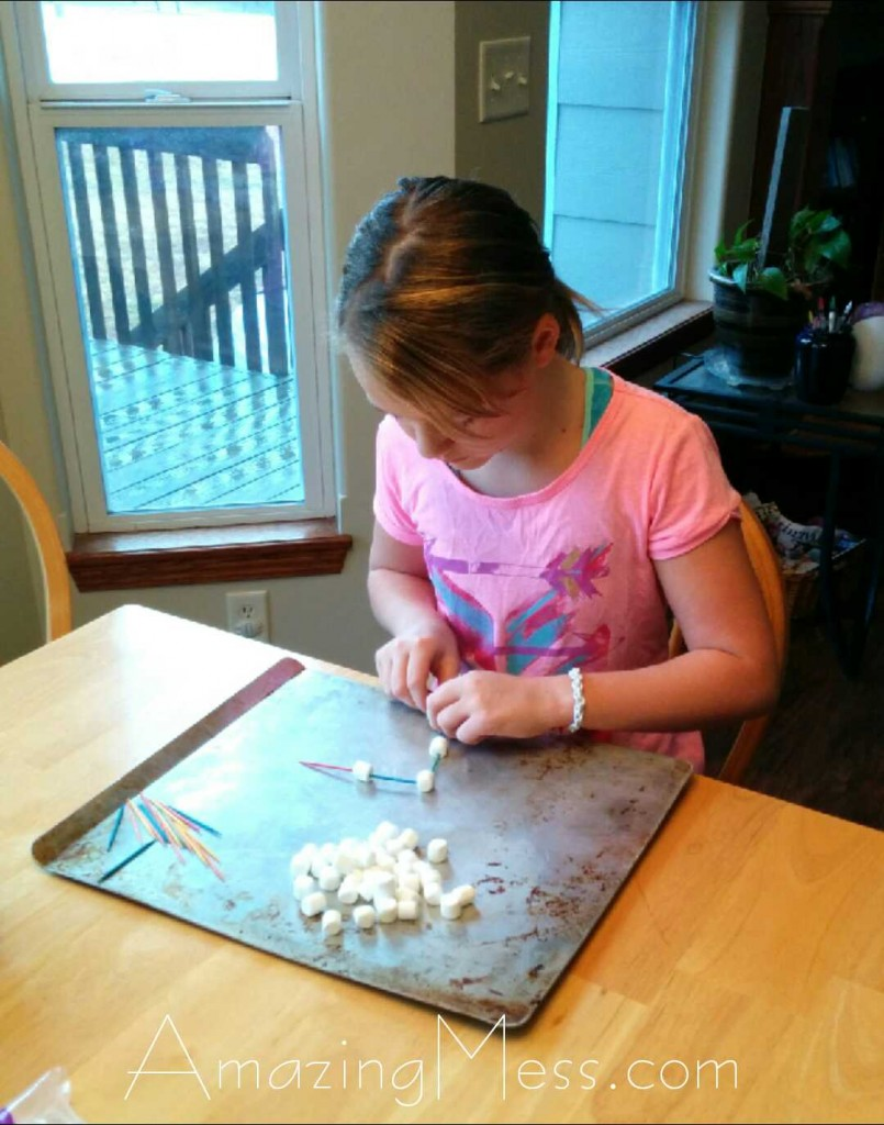Marshmallow Building Project